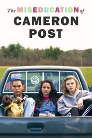 The Miseducation of Cameron Post streaming vf