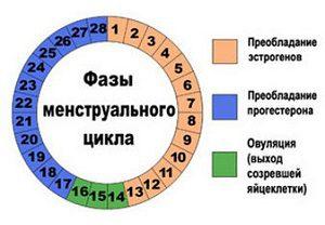 Изображение - Если есть эндометриоз можно ли забеременеть proxy?url=http%3A%2F%2Fkakrodit.ru%2Fwp-content%2Fuploads%2F2018%2F06%2F1-12-300x208