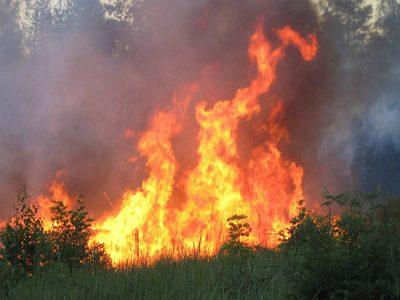 Изображение - Сонник тушить пожар proxy?url=http%3A%2F%2Fmy-rasskazhem.ru%2Fwp-content%2Fuploads%2F2017%2F05%2F0080-21-400x300