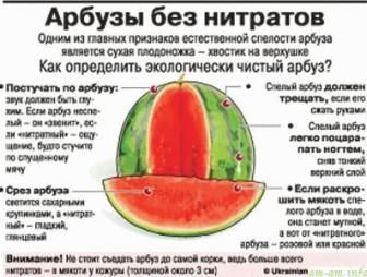 Изображение - Можно есть арбуз при гв proxy?url=http%3A%2F%2Frazvitie-krohi.ru%2Fwp-content%2Fuploads%2F2013%2F10%2Farbuz-pri-GV-336x254