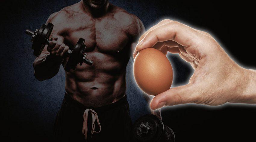 Изображение - Сколько вареных яиц можно есть proxy?url=https%3A%2F%2Fbuilderbody.ru%2Fwp-content%2Fuploads%2F2016%2F11%2F2-4-850x472