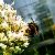 Изображение - Минтруд хочет предоставить работающим студентам новые льготы proxy?url=https%3A%2F%2Fcdn1.img.ria.ru%2Fuserpic%2F5a409efbddb5d63b03cfb5fd_vkontakte