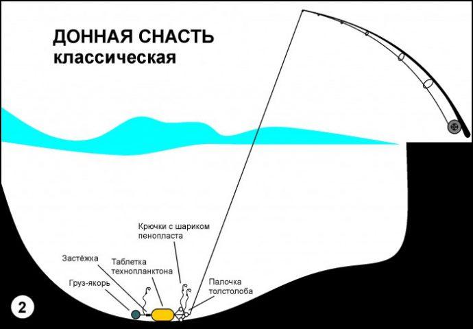 Изображение - Ловим толстолобика на технопланктон proxy?url=https%3A%2F%2Ffishingday.org%2Fwp-content%2Fuploads%2F2016%2F11%2F5-2-690x480