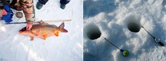 Изображение - Можно ли поймать зимой сазана proxy?url=https%3A%2F%2Ffishingday.org%2Fwp-content%2Fuploads%2F2017%2F01%2F3-20-690x256