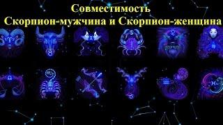 Знак зодиака близнецы мужчина скорпион совместимость