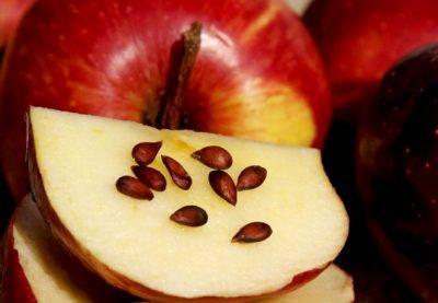 Изображение - Можно ли есть семечки яблок proxy?url=https%3A%2F%2Fotravlenye.ru%2Fwp-content%2Fuploads%2F1325-400x277