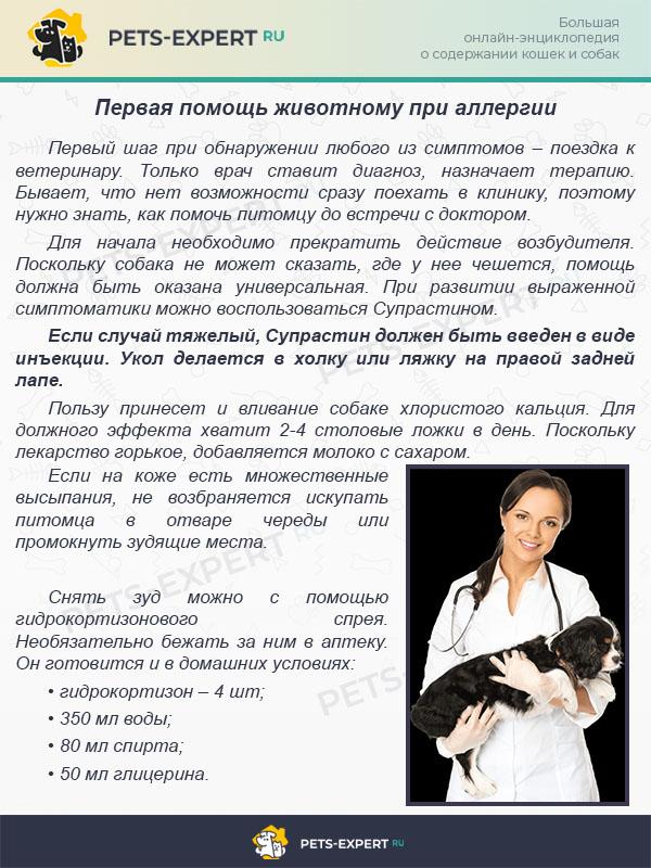 Изображение - Гипоаллергенный корм для собак как выбрать proxy?url=https%3A%2F%2Fpets-expert.ru%2Fwp-content%2Fuploads%2F2018%2F07%2F%25D0%25BA%25D0%25B2