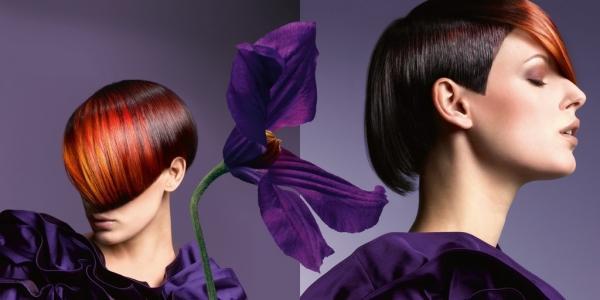 Изображение - Краска для волос италия профессиональная proxy?url=https%3A%2F%2Fquclub.ru%2Fwp-content%2Fuploads%2F2015%2F05%2FPalitra-tsvetov-kraski-dlya-volos