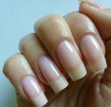 Изображение - Как быстро вырастить длинные и здоровые ногти в домашних условиях proxy?url=https%3A%2F%2Fwww.syl.ru%2Fmisc%2Fi%2Fai%2F155012%2F515414